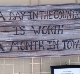 A-Day-in-the-country
