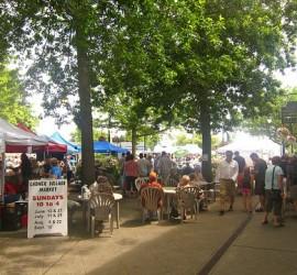 Ladner Market